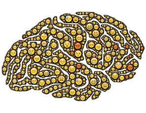 Let Neuroscience Lead You To Happiness Nancy'S Counseling Corner